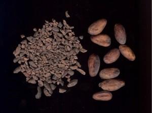 Kakaonibsid ja -oad